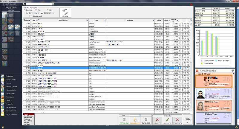 interim software